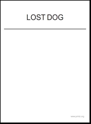 Lost Dog 2