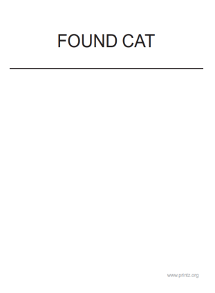 Found Cat Flyer 2