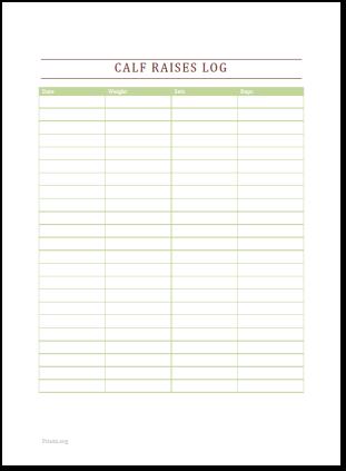 Calf Raises Log